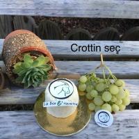 Crottin sec