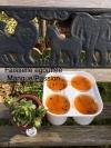 Faisselle (4 x 125gr) Mangue/Passion