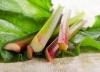Faisselle (4 x 125gr) Rhubarbe
